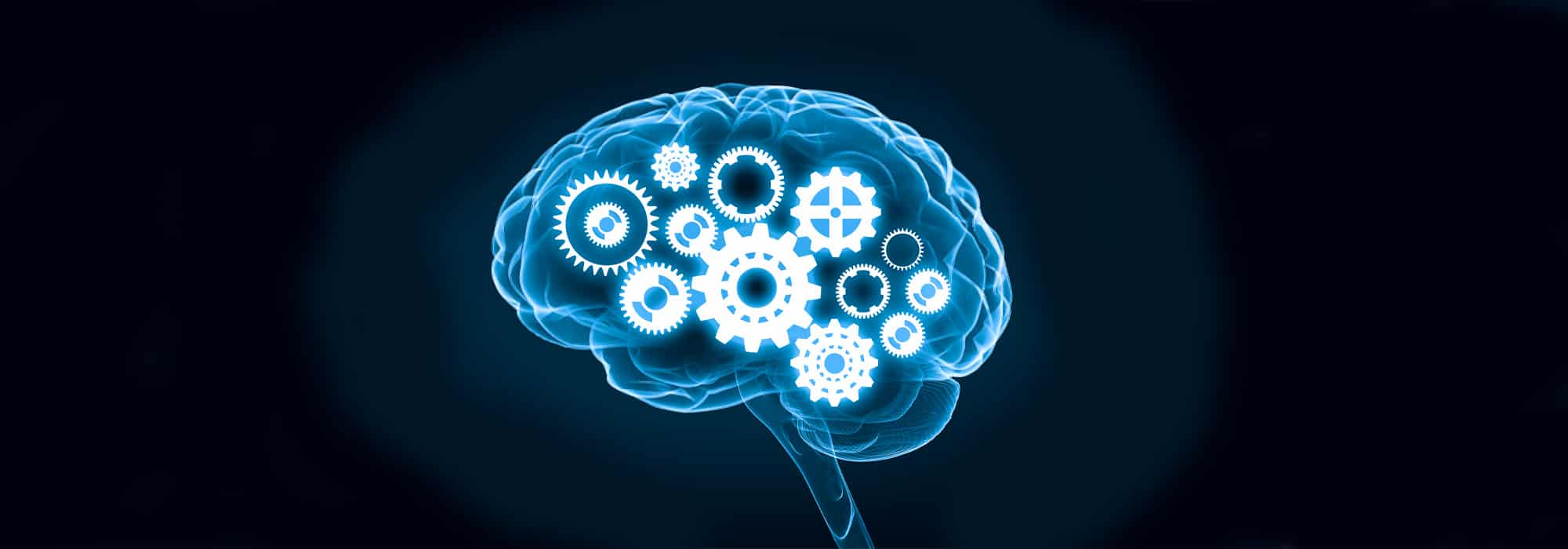 Common Questions about Modafinil