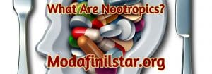 What Are Nootropics, modafinilstar.org